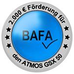 BAFA_Holzvergaser_Button_GSX-neu